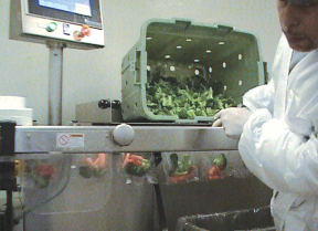 Fresno Produce Grows Its School Lunch Business with Faster Packaging Process