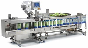 FAS SPrint Revolution food bagging system with integrated linear weigher